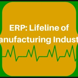 ERP: Lifeline of Manufacturing Industry