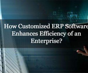 How Customized ERP Software Enhances Efficiency of an Enterprise?