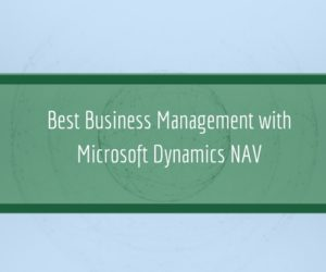 Best Business Management with Microsoft Dynamics NAV