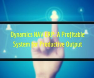 Dynamics NAV ERP: A Profitable System for Productive Output