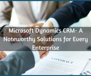 Microsoft Dynamics CRM- A Noteworthy Solutions for Every Enterprise