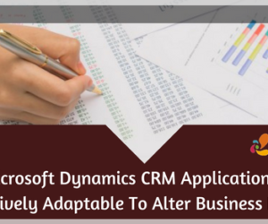 Microsoft Dynamics CRM Application Is Effectively Adaptable To Alter Business Needs