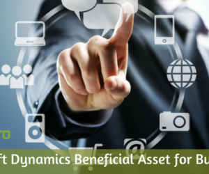 Microsoft Dynamics Beneficial Asset for Businesses